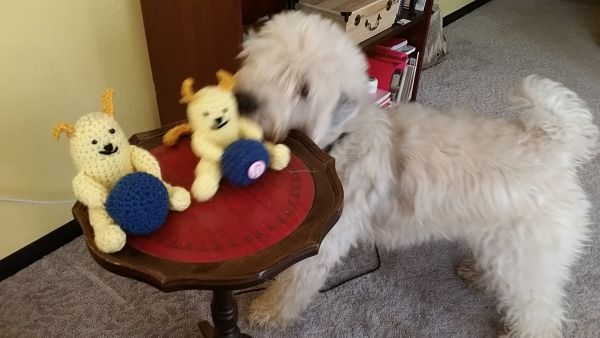 Sophie and Wapuu snatching