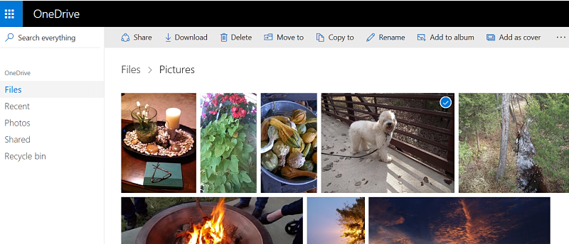 Tile view of OneDrive photos