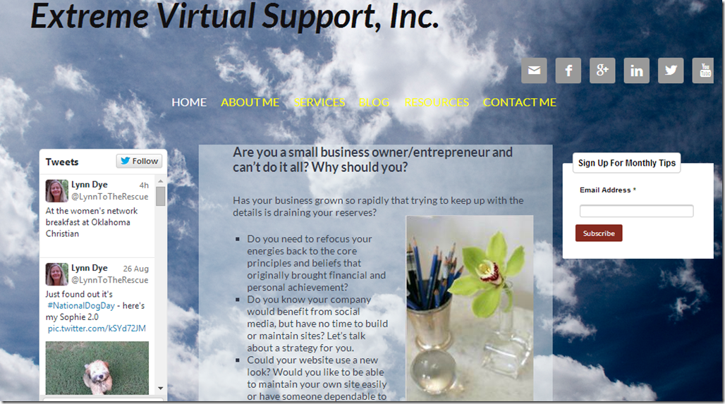 My website-Extreme Virtual Support